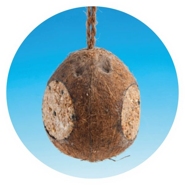 Kn04 whole coconut 3 holes kejo products for Whole coconut bird feeders
